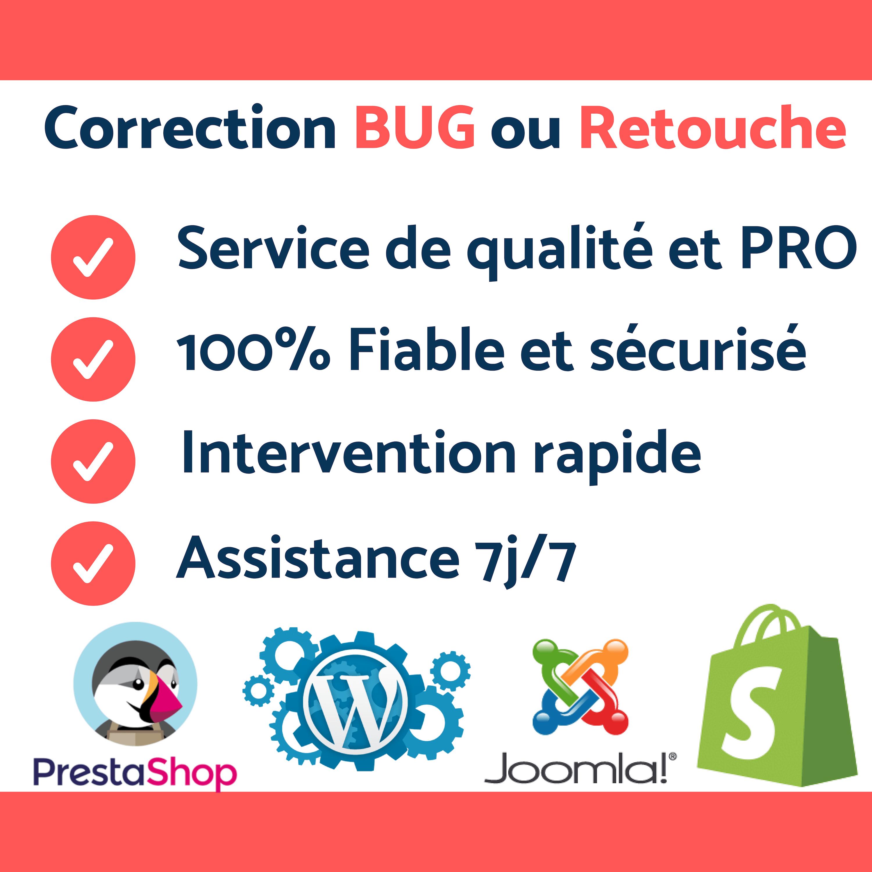 Correction De BUG & Retouche Sur Votre Site