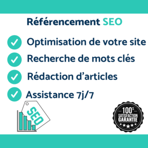 freelance seo web